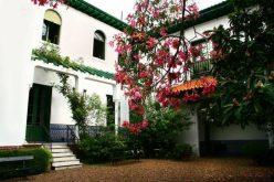 Flamenco en el jardin andaluz