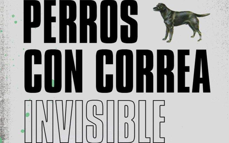 Perros con correa invisible