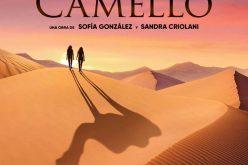 Patada de camello